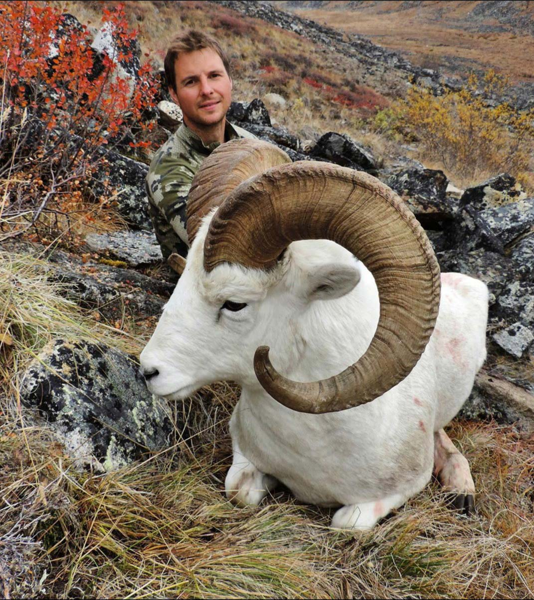 Yukon Canada Dall Sheep Hunting