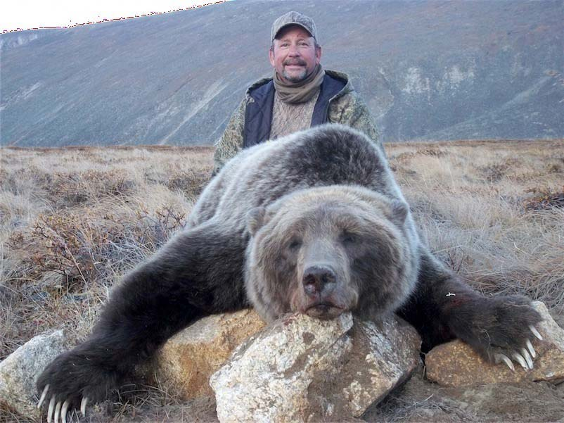 Hunt for grizzly bear in the Yukon